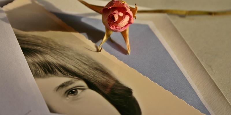 Gözlerimizdeki Işık Okumanın Aydınlığıyla Çoğalır Mı?